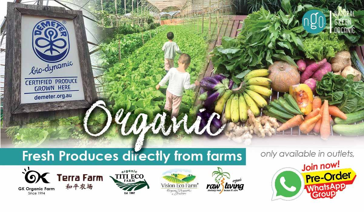 Organic-Vege-Farm